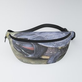 Redeared Slider Fanny Pack