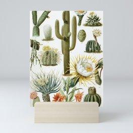 Vintage Cactus Chart Mini Art Print