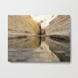 Desert Views. A Natural Oasis in the Yehuda Desert Metal Print