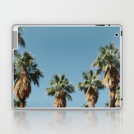 Indian Canyon - Palm Springs Laptop & iPad Skin
