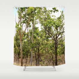 Beautiful forest regrowth Shower Curtain