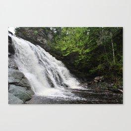 LAVERTY FALLS (CLOSE) Canvas Print