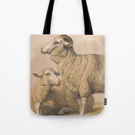 Vintage Domestic Sheep Illustration (1874) Tote Bag