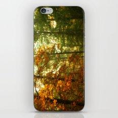 Mysterious Fall iPhone & iPod Skin