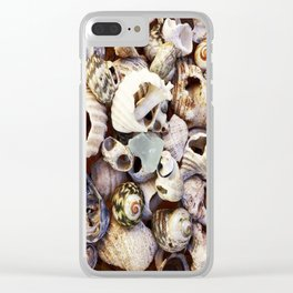Shell Collection Clear iPhone Case