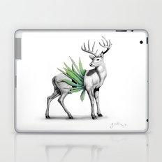 Whitetail Buck Laptop & iPad Skin