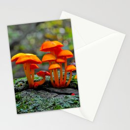 Forest Within a Forest. Mycena Leaiana Mushrooms, Southern Ontario, Canada. Stationery Cards