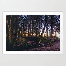 Wooded Tofino Art Print
