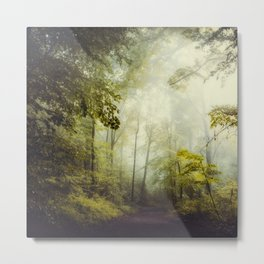 Glorious Woods Metal Print