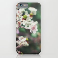 Rubus Slim Case iPhone 6s