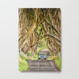 Mini Dash,Dark Hedges,Ireland,Northern Ireland,Landscape Metal Print