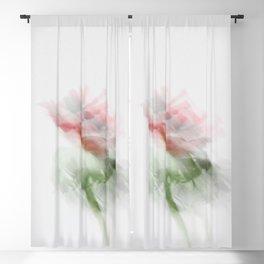 Anemone - JUSTART (c) Blackout Curtain