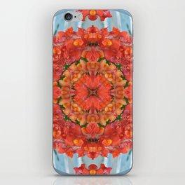 Mandala to Achieve Freedom iPhone Skin