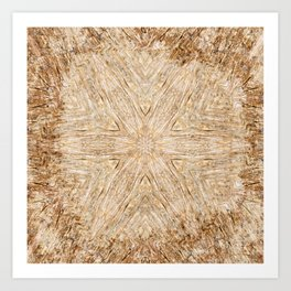 Petrified Wood Kaleidoscope Art Print