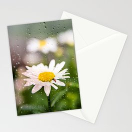 Daisies and Love Bugs Stationery Cards