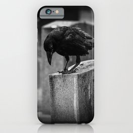 Cemetery Crow iPhone Case