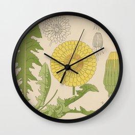 Dandelion Botany Chart Wall Clock