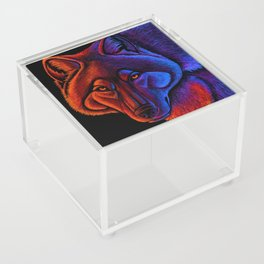 Fire Wolf Colorful Fantasy Animals Acrylic Box