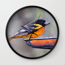 Oranges for the Oriole Wall Clock