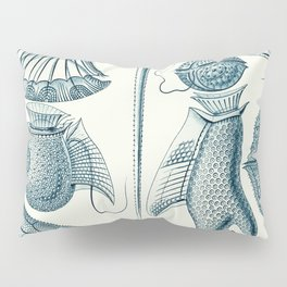 Ernst Haeckel Peridinea Plankton Pillow Sham