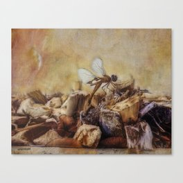 Respite of the Mosquito Hawk Canvas Print