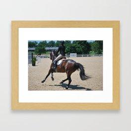 Horse Park 265 Framed Art Print