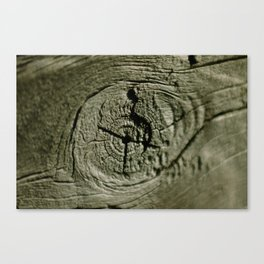 Nothing but wood! Canvas Print