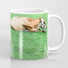 Lazy Cows Coffee Mug