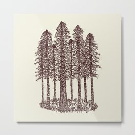 Cathedral Grove (Coastal Redwoods) Metal Print