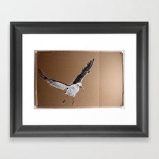 Laridae Framed Art Print