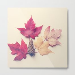Red Maple Leaf Collection Metal Print