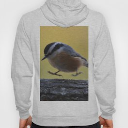 Red Breasted Nuthatch - Hopping Mad Hoody