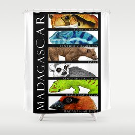 Animals of Madagascar Shower Curtain