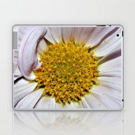 Daised Laptop & iPad Skin