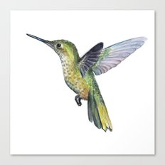 Hummingbird Watercolor Bird Animal Canvas Print