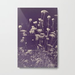 Queen Anne's Lace Duotone Botanical Antique Ivory on Faded Aubergine Metal Print