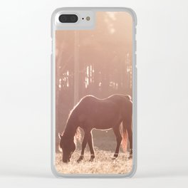 Sunset Graze Clear iPhone Case
