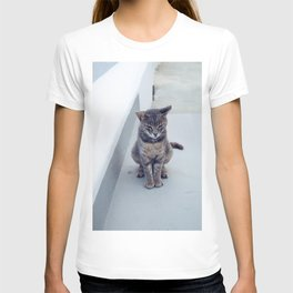 kitty in the island T-shirt