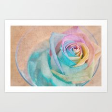Rainbow rose Art Print