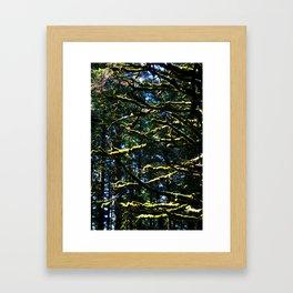 Moss & Branches Framed Art Print