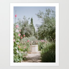 Garden at Gethsemane - Holy Land Fine Art Film Photography Art Print