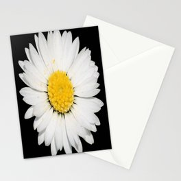 Top View of a White Daisy Isolated on Black Stationery Cards