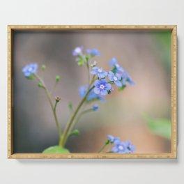 Siberian Bugloss - Brunnera Macrophylla Flower Serving Tray