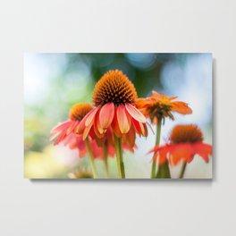 Pastel Bloom II Metal Print