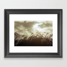 Marsh Framed Art Print