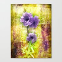 mexican Canvas Prints featuring Mexican Petunia by Judith Lee Folde Photography & Art
