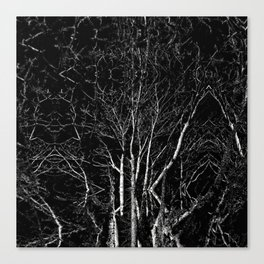 Creepy Tree Refraction Canvas Print