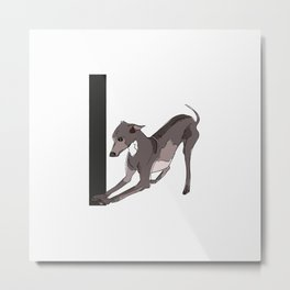 I is for Italian Greyhound Dog Metal Print