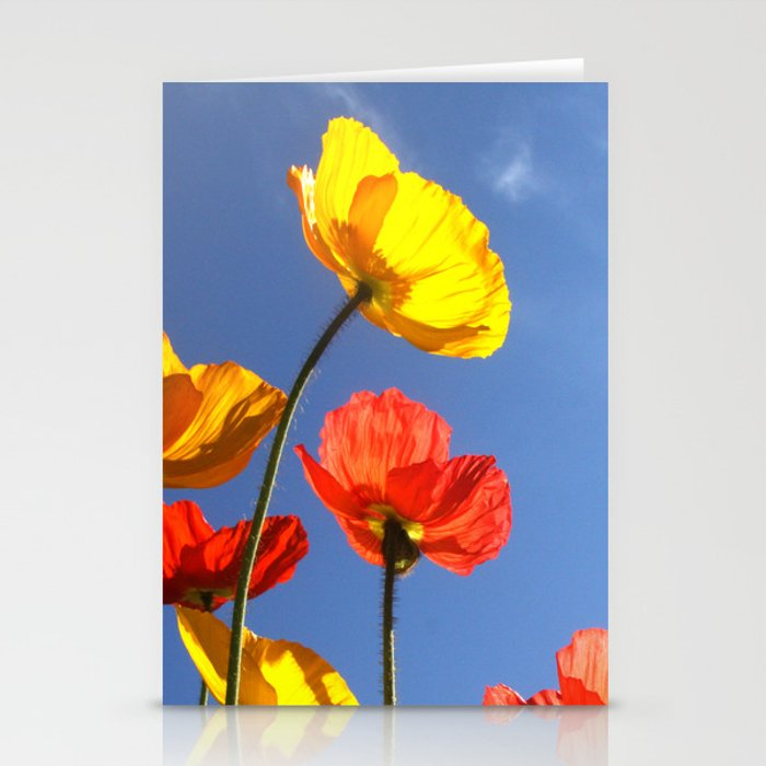 Happy Poppies Stationery Cards