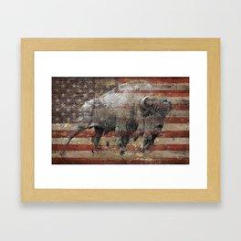 American Bison 2 Framed Art Print
